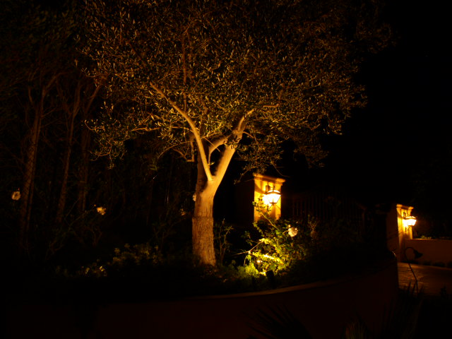 Outdoor Lighting Agoura Hills Landscape Lighting
